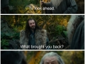 Philosophy of Gandalf