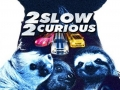 Need for Sloths