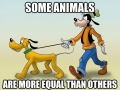 All animals are equal, but..