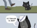 Oh no a black cat!