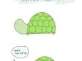 A sweet little turtle