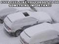 Oh sh*t my car!