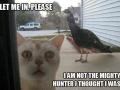 Let me in, please!