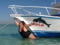 Dolphin Mimic Fail