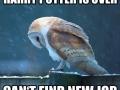 Poor Hedwig