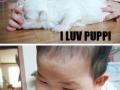I love puppy