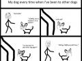 My jealous dog