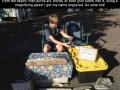 Go Solar Kid!