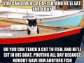Give a cat a fish..