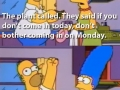 Homer, the plant called..