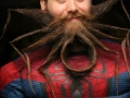 Spiderbeard