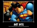 Bat Bite!