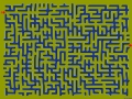 Can you solve this maze?