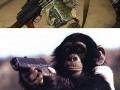 If animals have guns