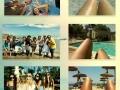 Summer pics