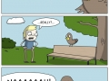 Birds opinion