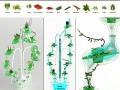 Hydroponic Cultivator