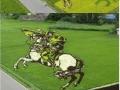 Rice field art in Japan