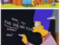 Things Simpsons taught us