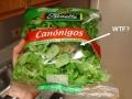Salad anyone?...