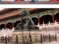 Ninja Level Chinese