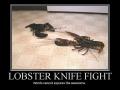 Lobster Knight Fight