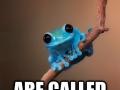 Tiny Fact Frog