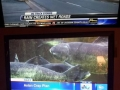 Important moments in news
