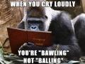 Grammar Gorilla