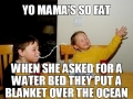 Yo mama so fat..