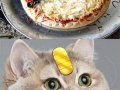 Pokeball Pizza!