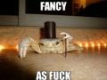 Fancy as f**k