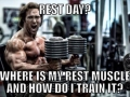 Where is my rest muscle?