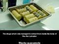 Failed drug smuggling
