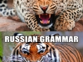 Different grammars