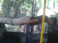Planking in a bus