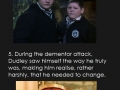 Harry Potter Facts Part 4