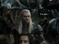 Elves and Dwarves