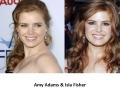 Similar looking celebs