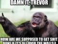 Seriously, Trevor..