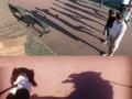 Sly Shadows