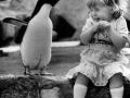 Penguin, u so funny!