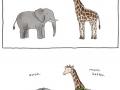Cute animal comics