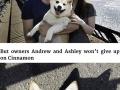 The world�s happiest dog