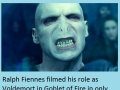 HP Facts part 5