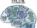 Brain of an introvert
