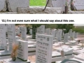 Graves around the world