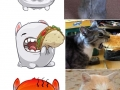 Fb stickers vs cats