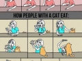 Cat owners will know