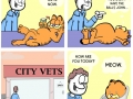 Garfield minus Garfield